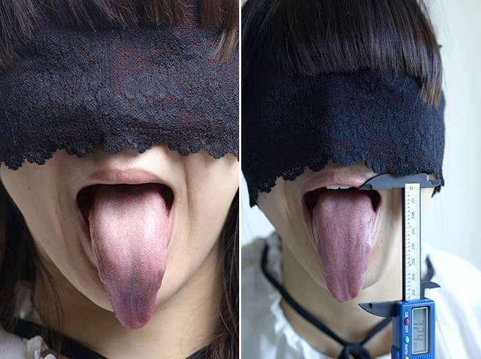 舌モデルの超絶長舌 (1)