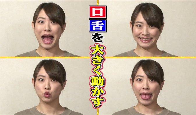 舌モデルの割れ舌 (1)
